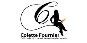 logo professionnel écrivain
