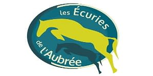 creation logo equitation cheval