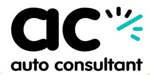 logo personnalise consultant