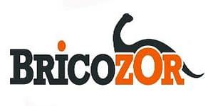 creation logo professionnel bricoleur