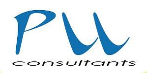 logo pro consultant
