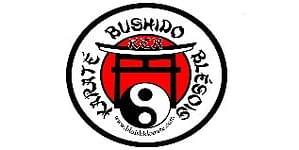 logo salle arts martiaux