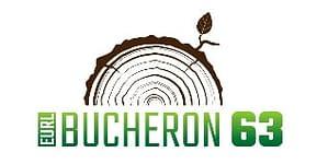 creation logo professionnel bucheronage
