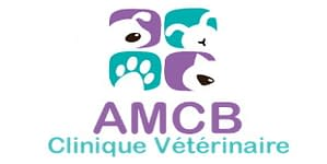 creation logo clinique veterinaire